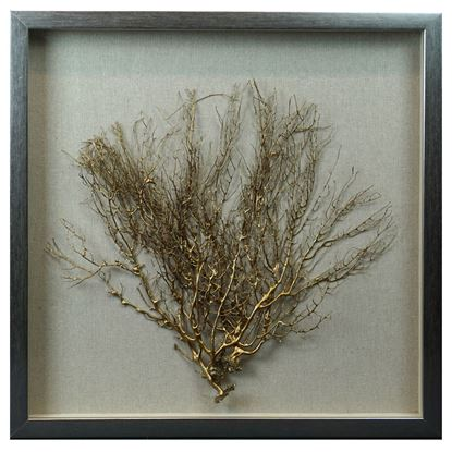 """Picture of Tree Roots Shadow Box Wall Décor (MS24299D) 19.69"""" L x 19.69"""" H"""