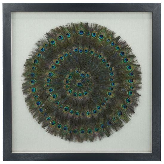 """Picture of Peacock Feather Shadow Box Wall Décor (MS25283)  35.43"""" x 35.43"""""""