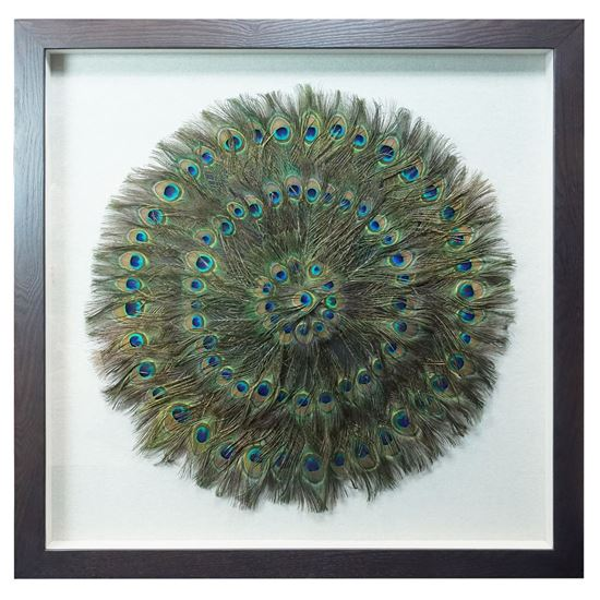 """Picture of Peacock Feather Shadow Box Wall Décor (MS45201)  35.43"""" x 35.43"""""""